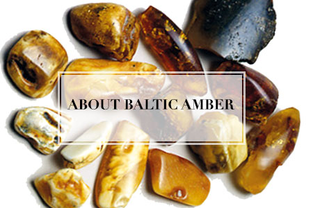 About Baltic Amber